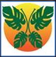 Lupus Foundation of Florida